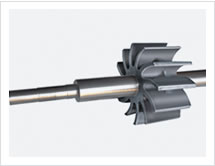 We stock a variety of the most popular Spare for Vacuum Pump